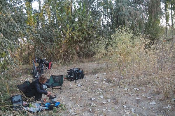 Zelten am Rand von Plantagen