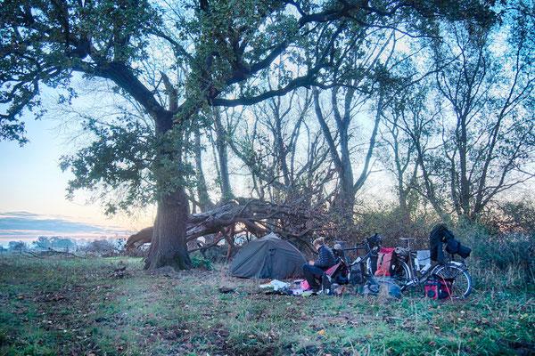 Campsite in den Elbauen
