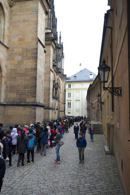 Schlange in der Prager Burg