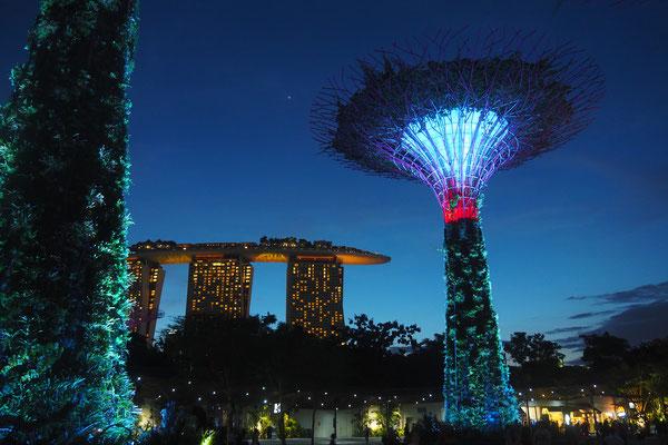 Im Park der Supertrees mit Blick auf das Marina Bay - Alles in 12 Taschen - Cycletouring/Radreise