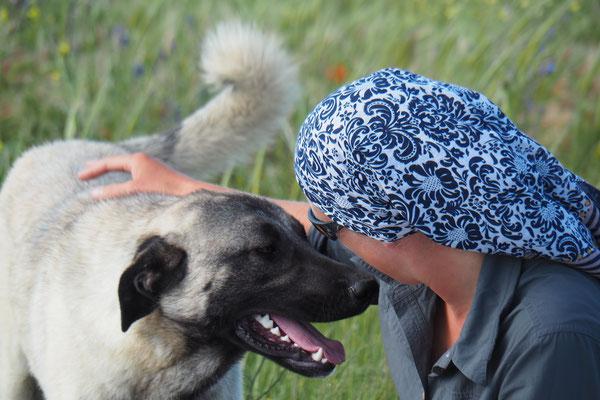 Streicheleinheiten für den Hund und für die Menschenseele