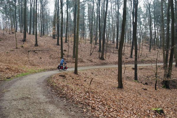 Walddurchfahrt