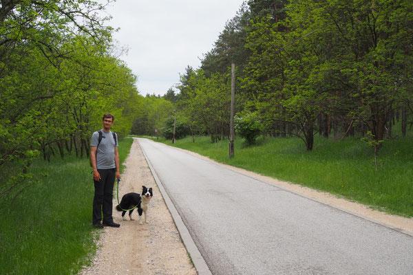 Stefan steht der Hund