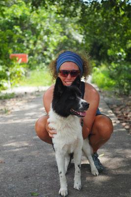 Kiki der Resort - und Haushund