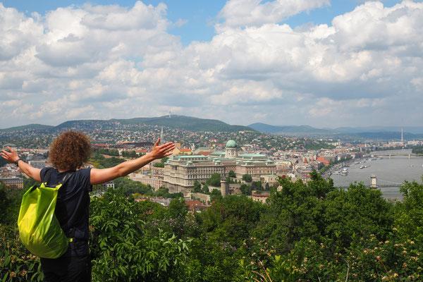 Budapest von Oben