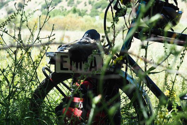Stilleben Emma