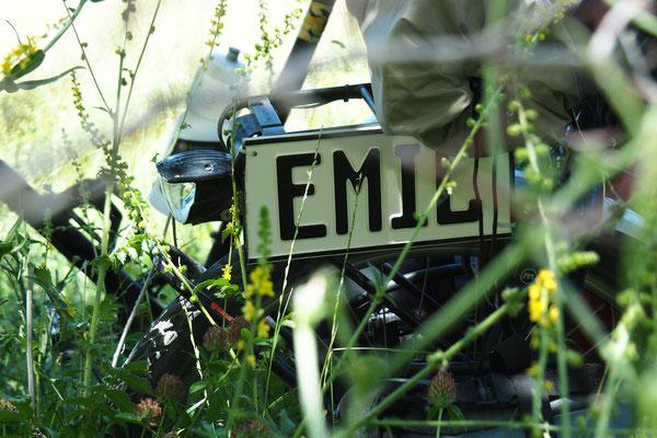 Stilleben Emil