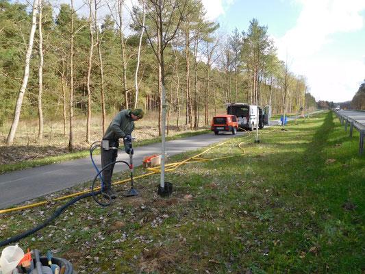 Sanierung einer Straßenbauallee mit dem GeoInjector trolly