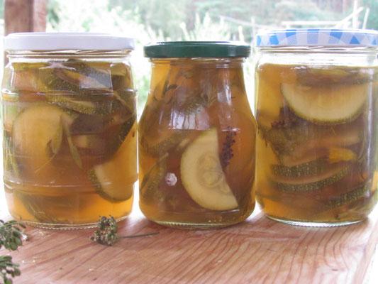 eingelegte Zucchini mit Wiesenkräutern Maria Moch
