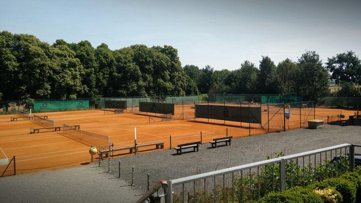 die Tennisplätze