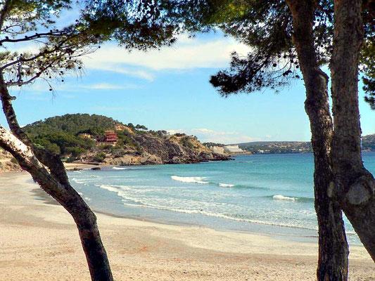 Matrix Seminar Mallorca