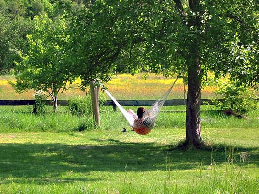 BIO Hotel Kenner's Landlust: Garten