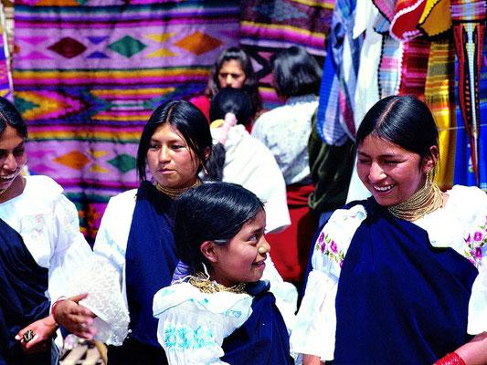 Indigina in Ecuador