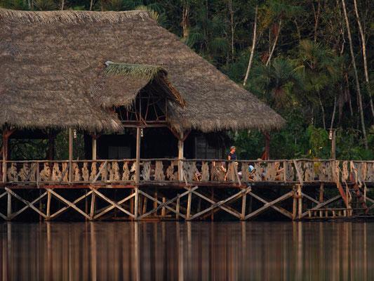 Ecuador: Amazonas Sacha Lodge