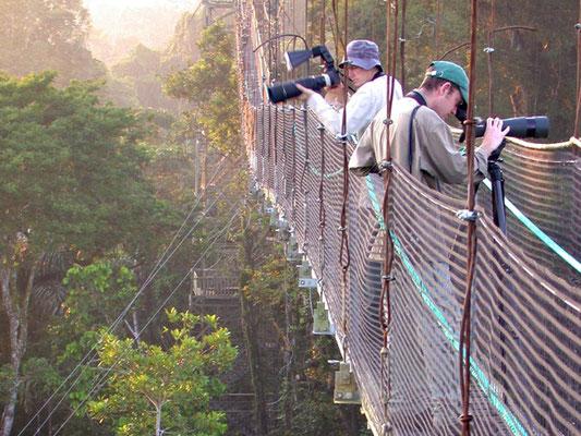 Ecuador: im Amazonas