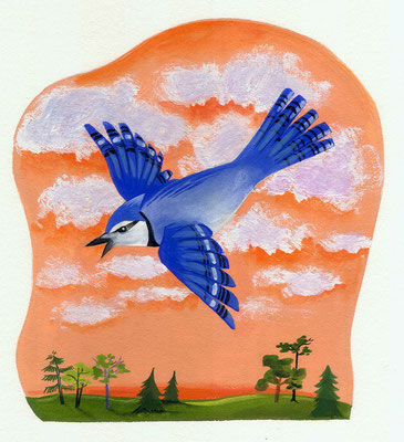 Birds / book illustration / Dinardo Design