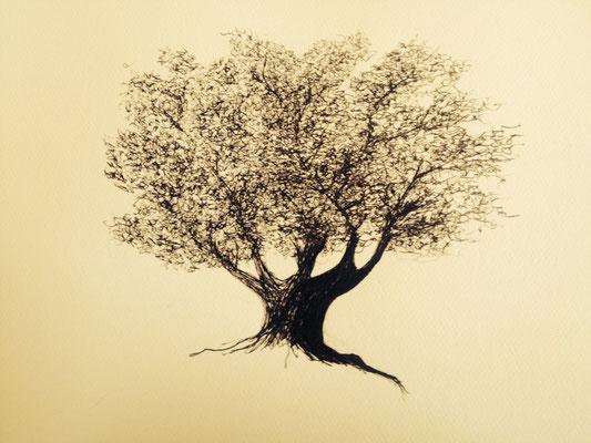 Erste handgefertigte Zeichnung von Elbas und Tristans Baum für das Cover von STonebound