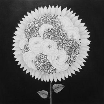 作品名:The 花 素材:木製パネル/ケント紙/鉛筆 サイズ:S6号 41.0㎝×41.0㎝ 作成:2016年