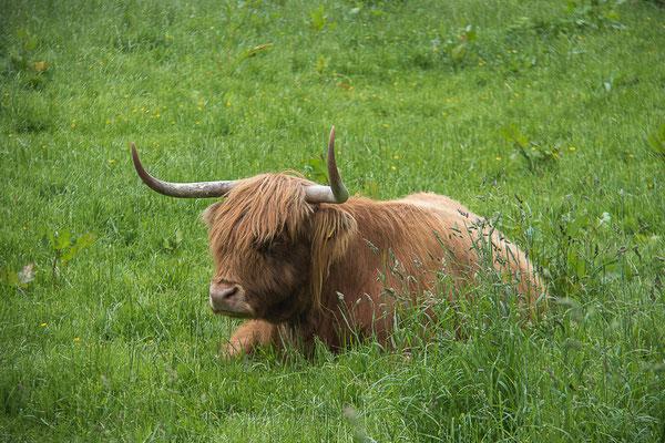 Wanderreise Schottland