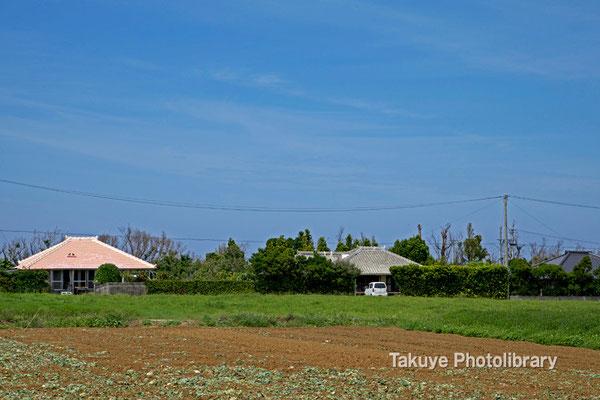 07-0078 今帰仁村の民家