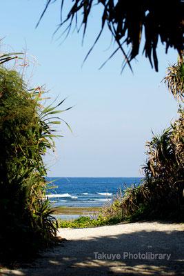 07-0085 海へ続く路