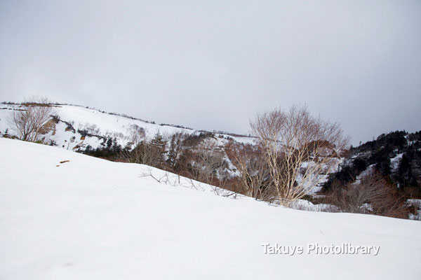 09-0060 安比高原の雪景色-岩手県