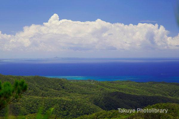 07-0093 ブロッコリーの森と東シナ海
