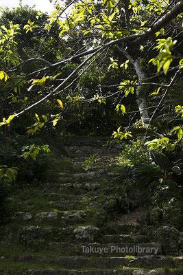 06h-0008 ミントングスク アマミキヨ 安住の地 グスク跡へと登る石段