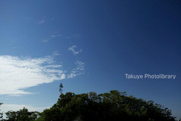 08-0034 北森御嶽(にしむいうたき)の杜