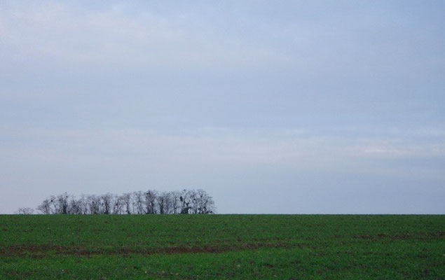 10-0073 牧歌的な風景。オーヴェル・シュル・オワーズ