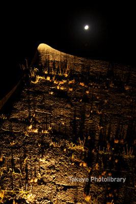 01-0039 ライトアップされた首里城 城壁のケーシ(先端部分)