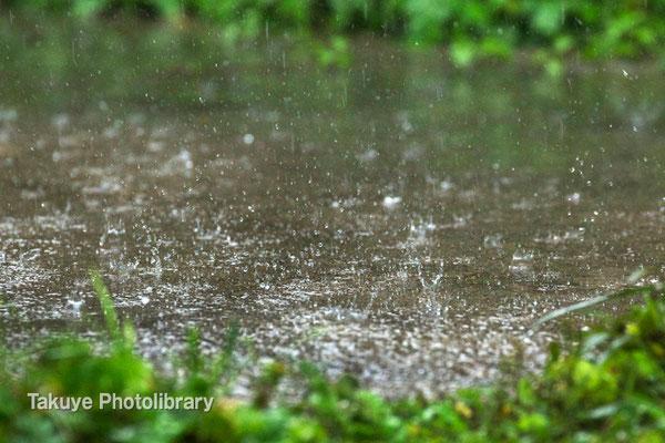 07-0077 雨の情景