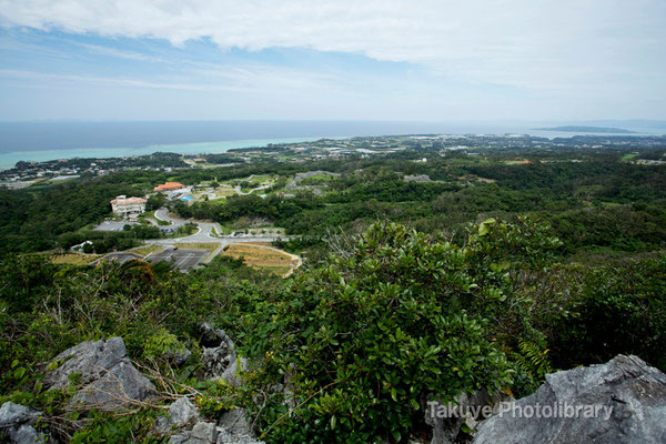 06e 0002n クバの御嶽の森の頂上からの眺め。右上には古宇利島が…