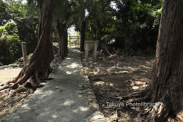 06g-0001 伊祖神社-英祖之宮 側から見た参詣道、鳥居
