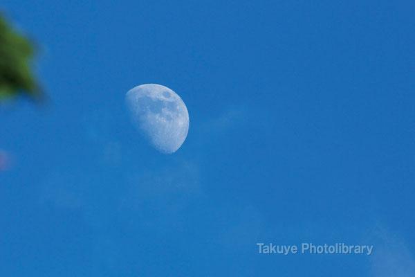 07c-0010 白く輝く真昼の月