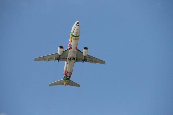 15-0017  JAL B737-46M