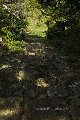 06h-0001 ミントングスク アマミキヨ 安住の地 グスク跡から見た石段