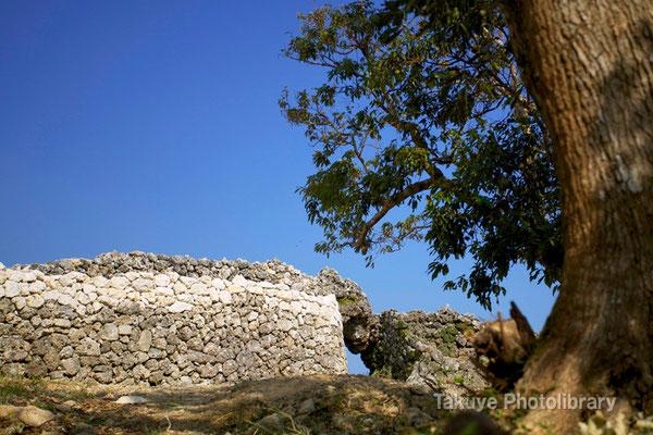 06b-0009 主郭跡から見た城壁