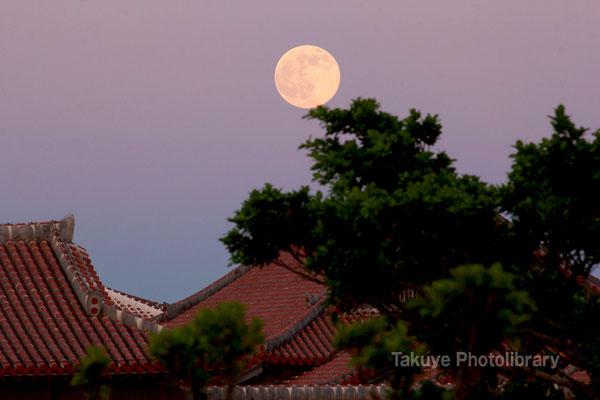 07c-0015 首里城と満月