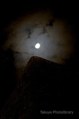 01-0041 月夜に浮かび上がる首里城 城壁のケーシ(先端部分)