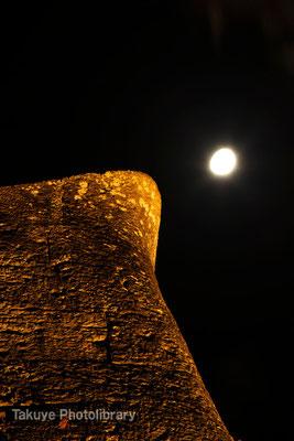 01-0040 月夜の首里城 城壁のケーシ(先端部分)