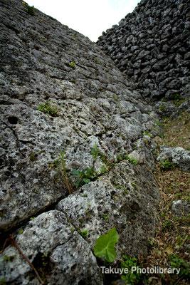06a-0015 南のアザナ城壁