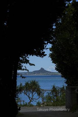 07d-0013 備瀬崎 フクギ並木と伊江島