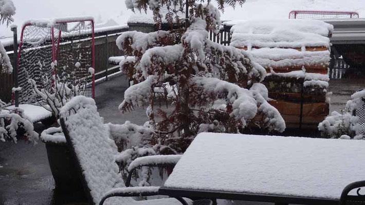 Ein Blick aus dem Fenster, heute Morgen.