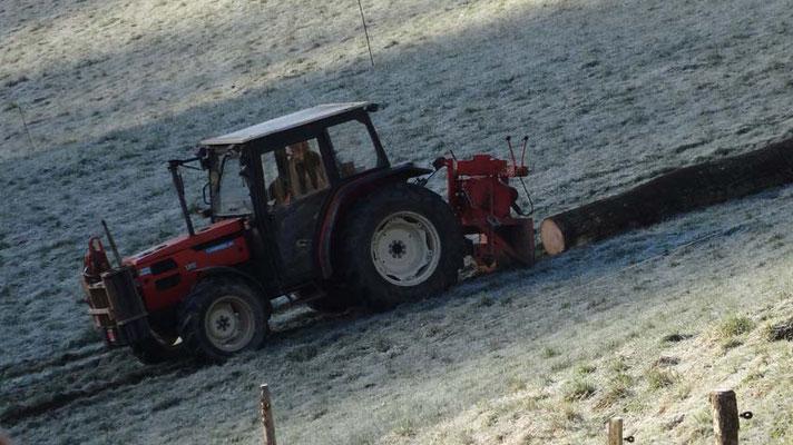 In den freien Tagen nach Weihnachten, wirde Brennholz gerüstet.
