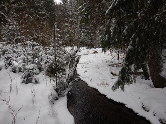Noch ein hübscher Bachlauf im schönen Schnee.