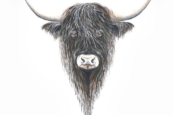 Muurschildering van Schotse Hooglander