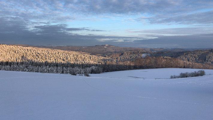 verschneite Felder mit Blick zur Augustusburg