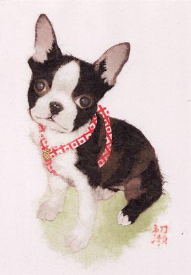 和紙絵・犬