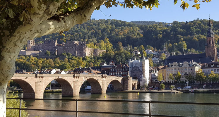 Heidelberg, die alte Brücke und das Schloss